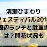清瀬ひまわりフェスティバル2019周辺ランチと駐車場は?開花状況も