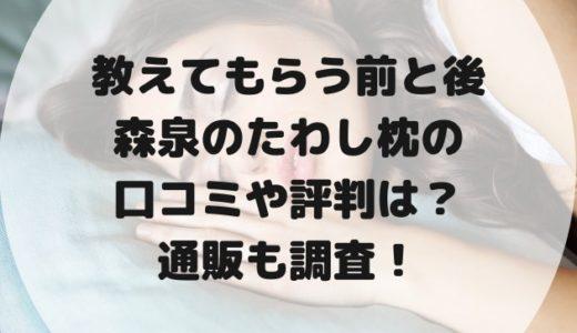 森泉の睡眠用たわし(枕)の口コミは?通販や値段・送料を調査!